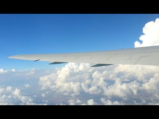 Авиакомпания Северный ветер Nordwind Airlines Airlines Inform
