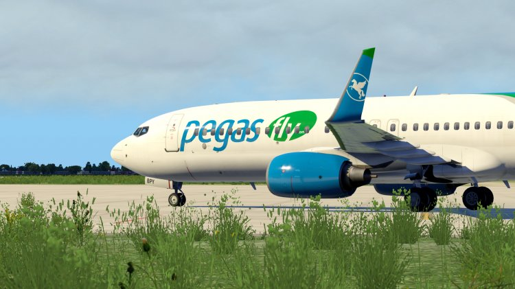 Files - Repaint PMDG -737/900  Turkmenistan (old color